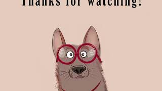 Заноза в глазу у Собаки! Извлекаем.