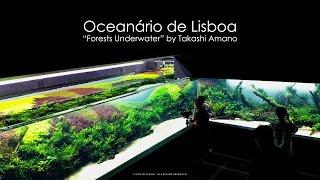 Grand Opening - Forests Underwater by Takashi Amano (Lisbon Oceanarium)