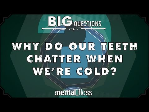 Why do our teeth chatter when we're cold? - Big Questions (Ep. 14)