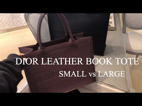 Dior Book tote bag small vs Large Size   #dior #personalshopping