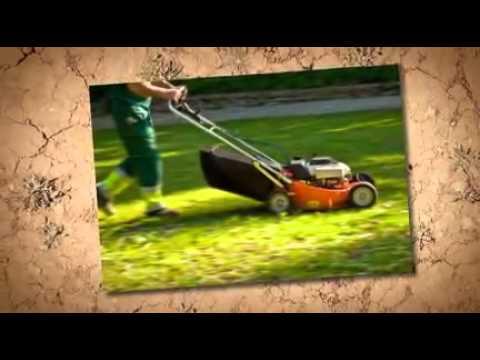 Saffron walden gardening services local gardening services for Local gardening services