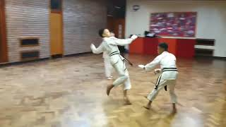 Two Against One Free Sparring 20190214