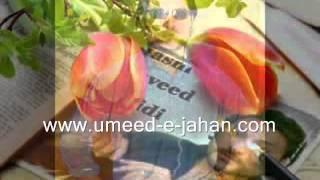 urdu poetry, Rj Hasni Naveed afridi, urdu shairy Thumbnail