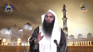 Tahir Ul Qadri Kay Jhoot By Shk Tauseef Ur Rehman - Part 2