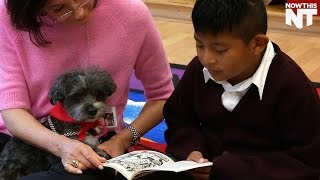 Dog Listens To Kids Read So They Can Learn Without Getting Embarrassed