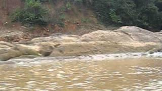 Navegando por el Río Beni afluente del Amazonas en Rurrenabaque - Bolivia