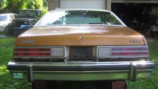 Buick Skylark 1978 ebay Auction June 1, 2009 Car SOLD