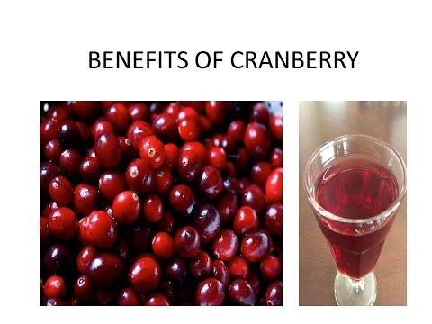 BENEFITS OF CRANBERRY FRUITS