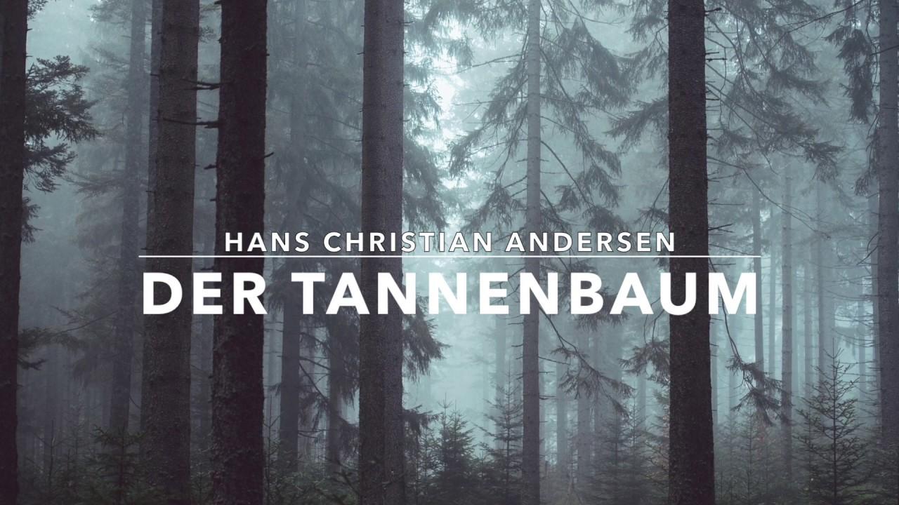 Märchen Von Hans Christian Andersen Der Tannenbaum.Der Tannenbaum Märchen Von Hans Christian Andersen Gelesen Von René Träder Hörbuch
