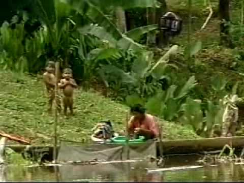 Amazonia Expeditions - Tour (part 3 of 3)