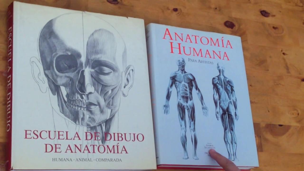 Escuela de Dibujo de Anatoma y Anatoma Humana para Artistas de