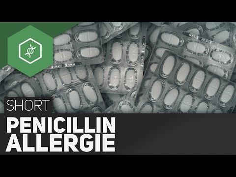Penicillin-Allergie ● Gehe Auf SIMPLECLUB.DE/GO & Werde #EinserSchüler