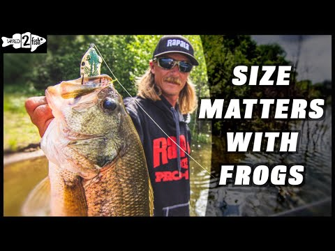 Frog Fishing Tips With Seth Feider: Size And Color Guidance