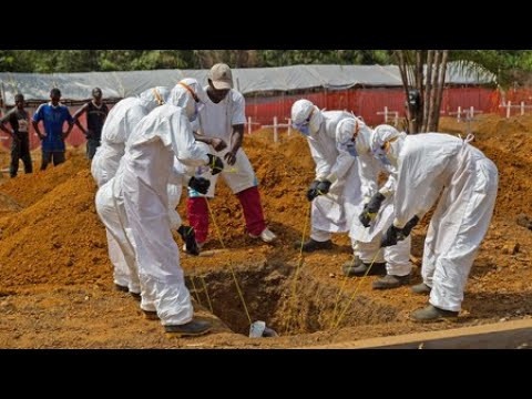 Huge Ebola Outbreak To Be Declared Global Emergency