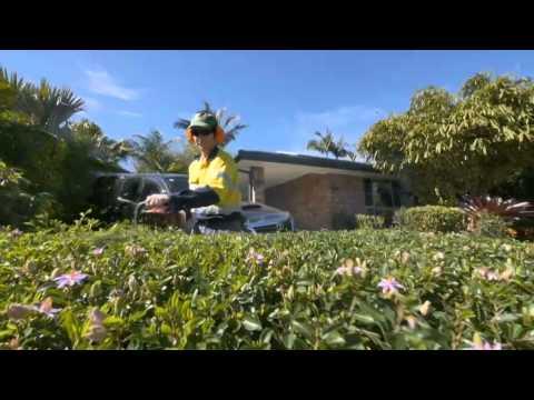 All Seasons Garden Management