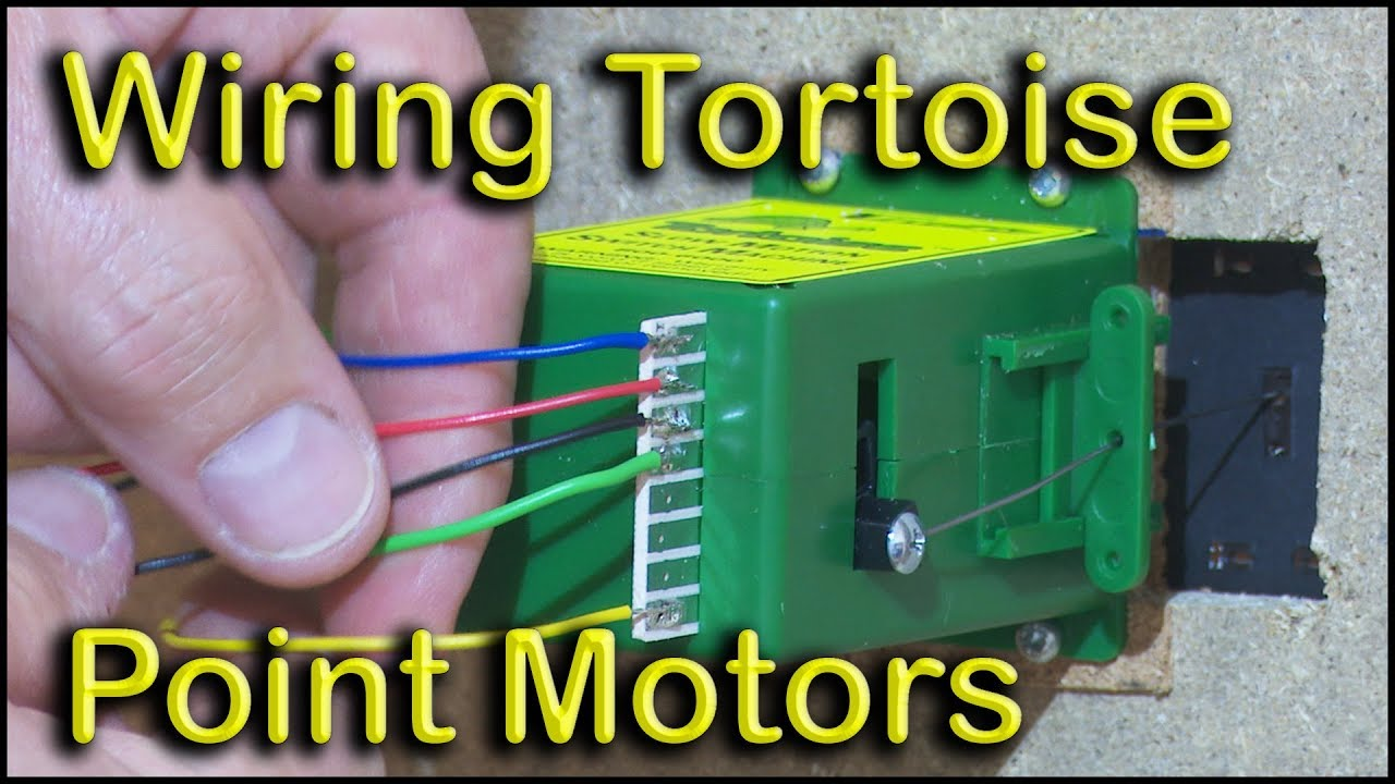 Tortoise Point Motor Wiring Diagram Free Download Switch Machine Motors Youtube Dcc At