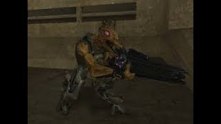 Halo 2's Back...