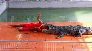 Вьетнам Нячанг №18 Экскурсия Discovery крокодиловое шоу СЛАБОНЕРВНЫМ НЕ СМОТРЕТЬ(Вьетнам Нячанг №18 Экскурсия Discovery. Крокодиловое шоу СЛАБОНЕРВНЫМ НЕ СМОТРЕТЬ !!! Если интересна информация..., 2016-11-08T15:52:14.000Z)