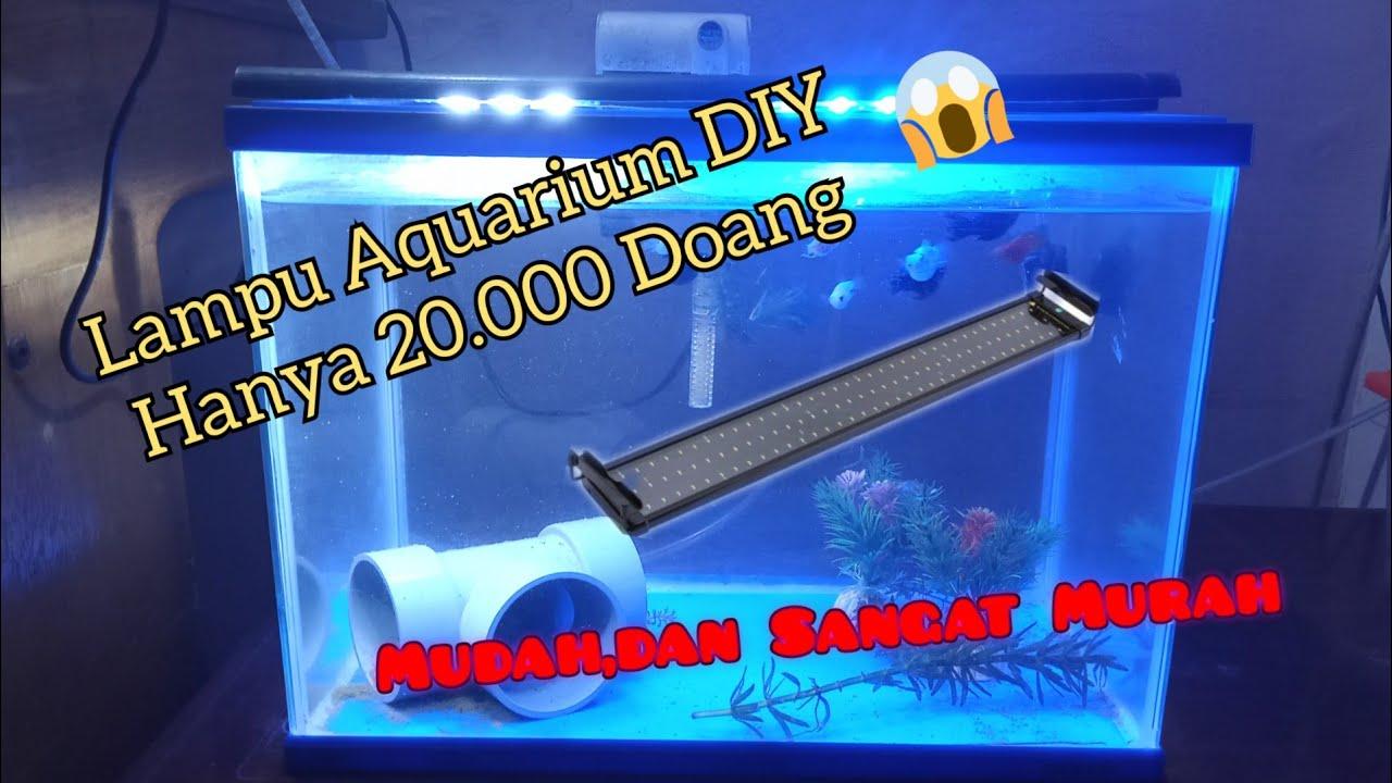 Lampu Diy Modal 20 000 Saja Cara Membuat Lampu Aquarium Sendiri Youtube Membuat lampu aquarium sendiri