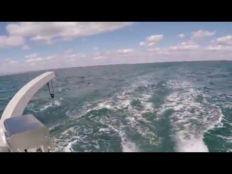 X5 Sail exterior & interior