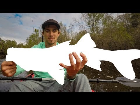 Kayak Fishing The Peace River For Big Fish - Episode 17