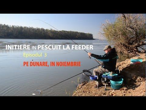 Initiere in pescuitul la feeder -Ep.3 Pe Dunare in Noiembrie