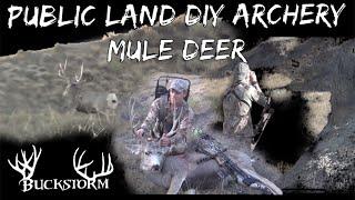 Public Land SD DIY Mule Deer Hunt