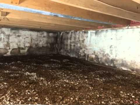 Crawlspace mold remediation crawlspace mold cleaning black mold crawlspace mold remediation crawlspace mold cleaning black mold removal youtube solutioingenieria Choice Image