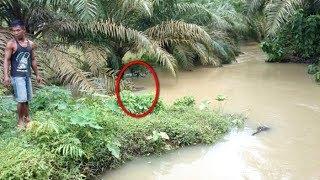NEKAT !! Pria ini Coba Bersiul Di Sungai Kalimantan, Tiba² Dari Sungai Muncul Sosok Makhluk Besar!