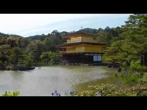 Japan: Tokyo, Kyoto, Nagoya, & Okazaki | Business in Japan Maymester 2014