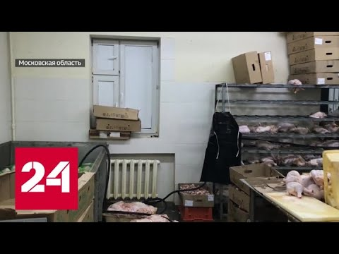 Токсичная шаурма: в Люберцах обнаружен подпольный мясной цех - Россия 24