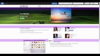 Odoo Software para Marketing Digital. Openinnova