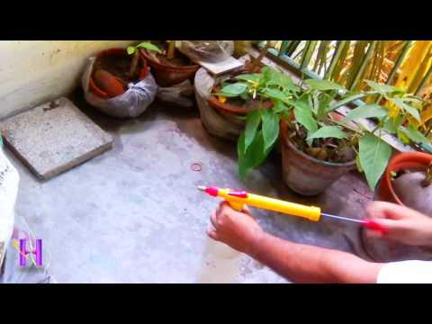 How to use portable hand pressure garden spray pump