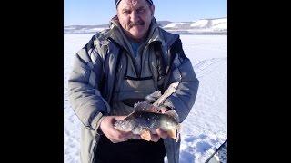 Рыбалка зимой в Шарыпово (Красноярский край). Березовское вдх. 6-7 января 2016г.