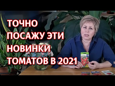 Супер новинки томатов 2020! Гибриды томатов для теплицы и открытого грунта.