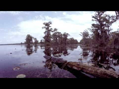 Louisiana Swamp Tour in 4K