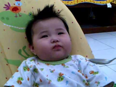 jeruk baby chayank