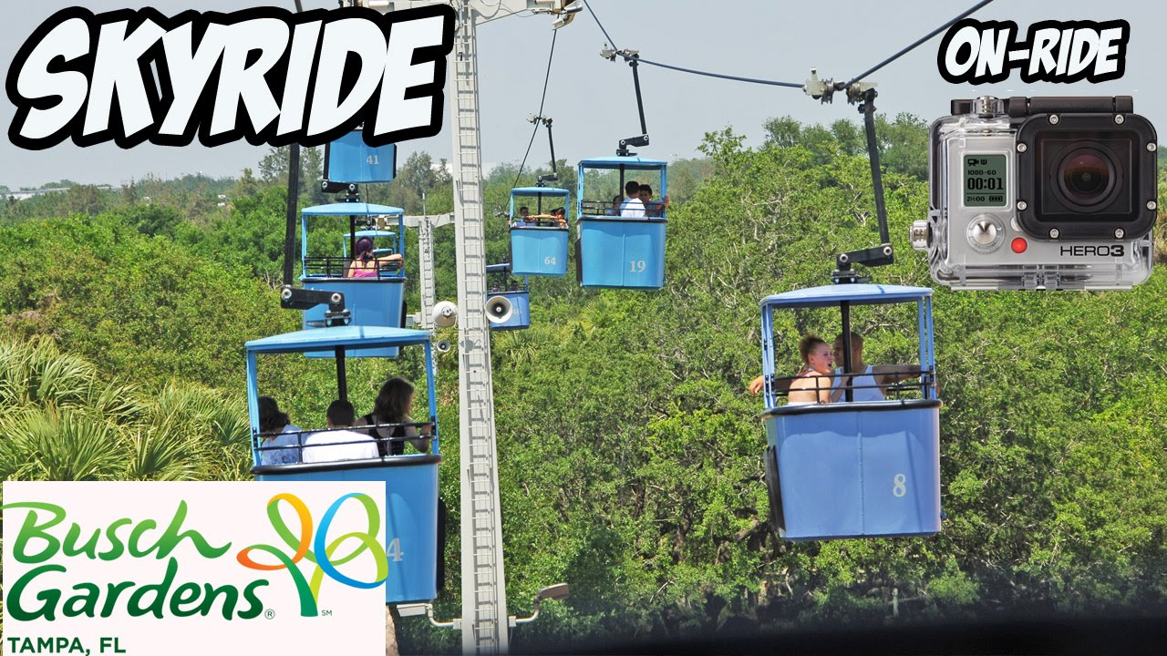 Beau SKYRIDE Cable Car ON RIDE   Busch Gardens Tampa