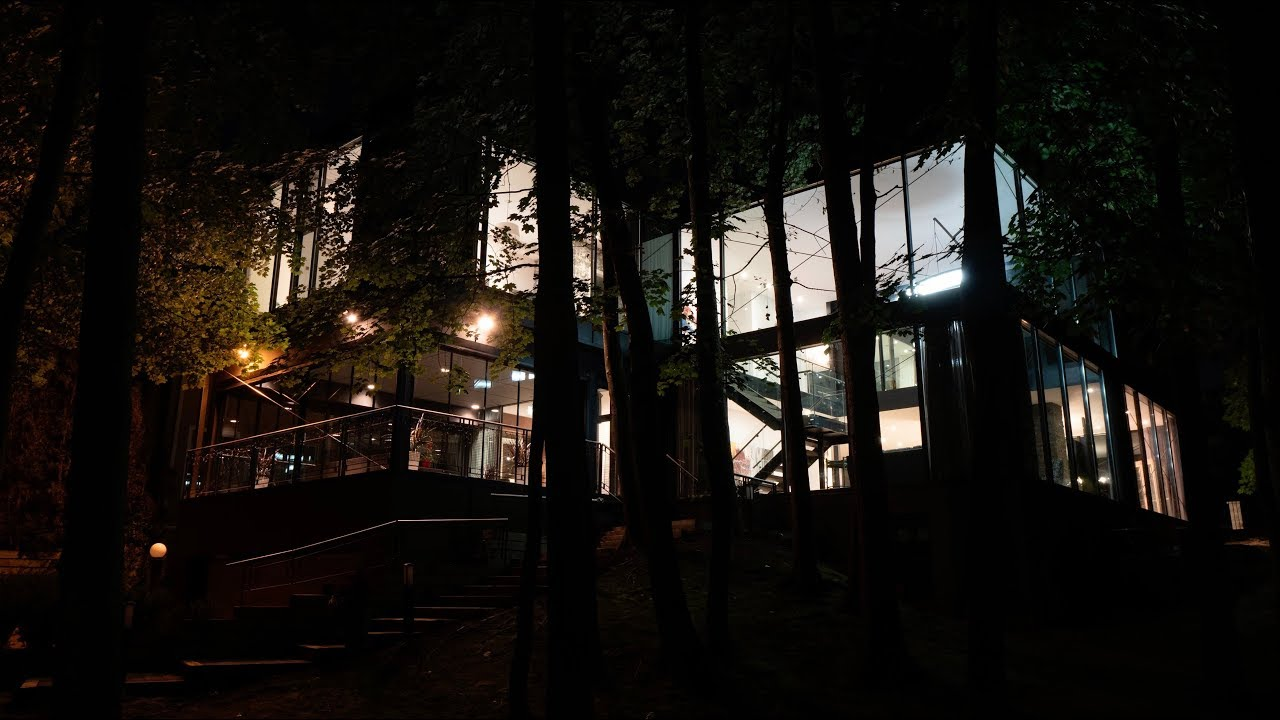 Modern Glass Treehouse   Contemporary Living Oakville