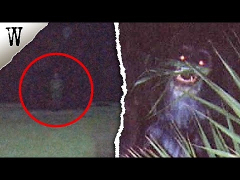 6 Haunting FLORIDA GHOSTS & Mysteries