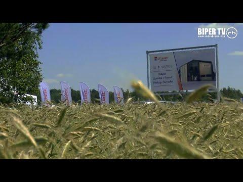 Pierwszy w Europie Instytut żywienia i hodowli polskiego kurczaka Wipasz zbuduje w gminie Drelów