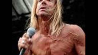 Iggy Pop & Stooges - The Passenger(Live)