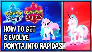How to Get & Evolve Galarian Ponyta into Galarian Rapidash in Pokémon Shield!