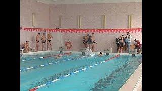 Куряне сдают ГТО  Что показывают результаты в бассейне?