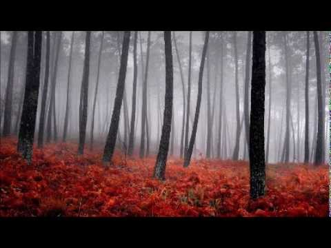 Bansi Riktam - Green Space (Original Mix)