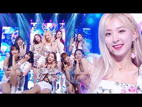 WJSN - Boogie Up [SBS Inkigayo Ep 1009]