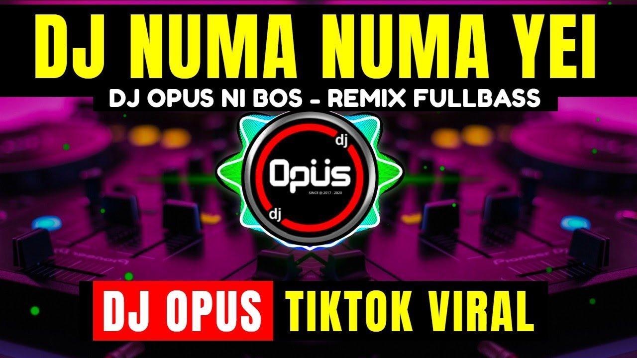 DJ NUMA NUMA YEI REMIX TIK TOK VIRAL 2021