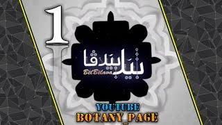 Warven Tufiq Bel Belava Xalaka 1 Gonde (bawarde)2019 بیل بیلافا خه له کا ۱ گوندی (باوه ردی)۲۰۱۹