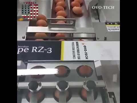 Technology  Egg lifter and braker