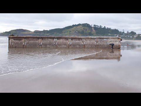Responding to Risks of Marine Debris: Japanese Tsunami Marine Debris